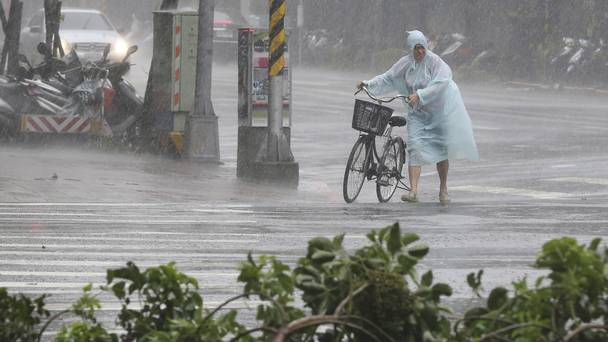 Behind fallen trees a man braves the strong winds from Typhoon Soudelor with his bicycle in Taipei